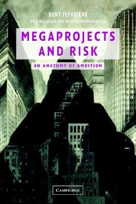 9780521009461 - Megaproject and risk: making decisions in an uncertain world