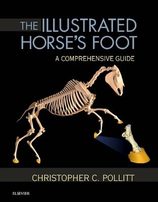 9780702046551 - The Illustrated Horse's Foot