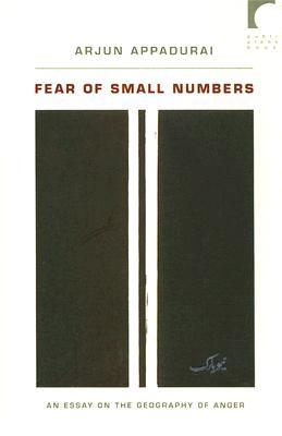 9780822338635 - Fear of small numbers an essay on the geography of anger