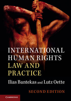 9781107562110 - International Human Rights Law and Practice