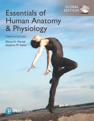 9781292216232 - Essentials of Human Anatomy & Physiology plus Pearson Mastering Anatomy & Physiology with Pearson eText, Global Edition