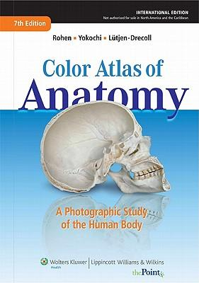 9781609137854 - Color atlas of anatomy a photographic study of the human body