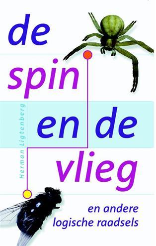 De spin en de vlieg