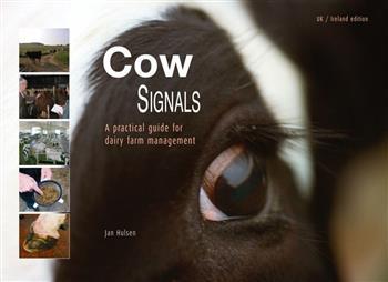 Cow signals, English edition
